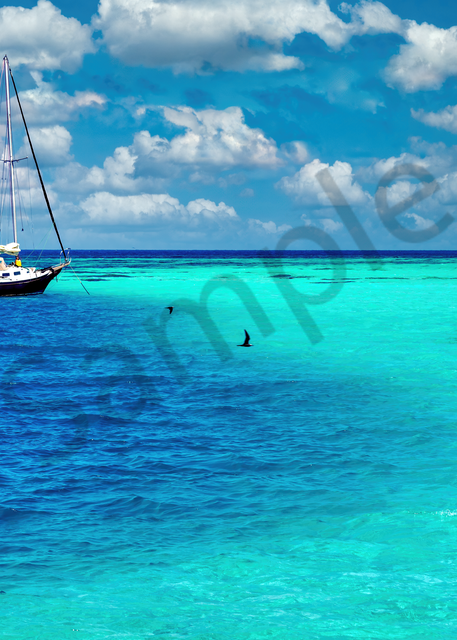 Art Print Dry Tortugas National Park Florida Depth and Current