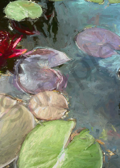 Black Princess Water Lilies Art | smalljoysstudio