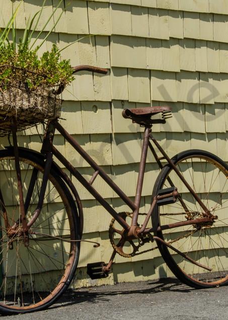 Basket plant bike