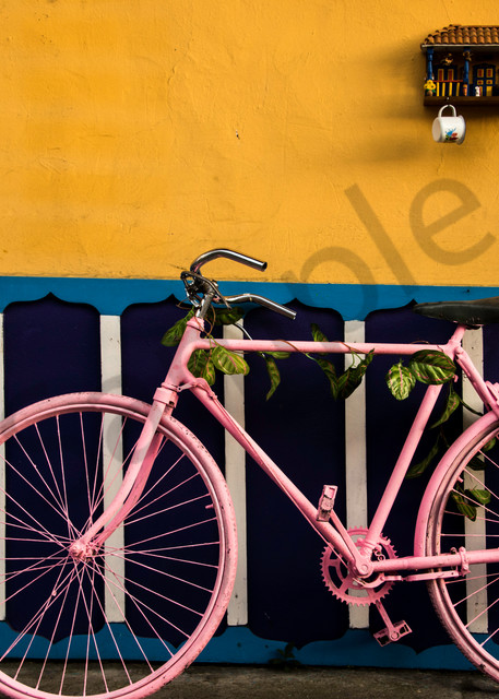 Pink bike Colombia