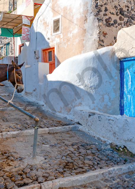 Art Print Santorini Greece Donkey Rest Stop