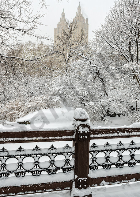 Snow-covered railing in Central Park