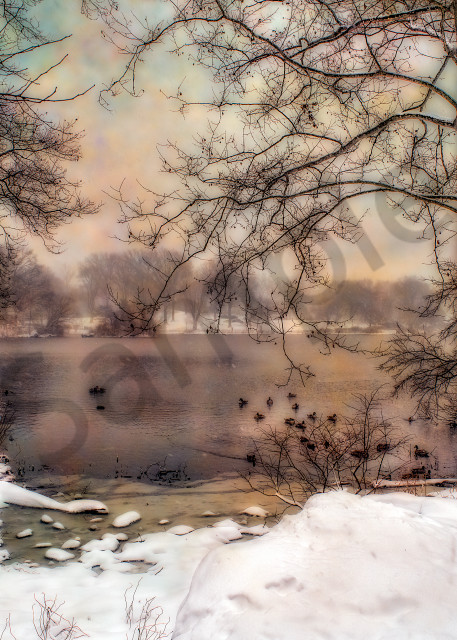 Lake in Central Park during blizzard