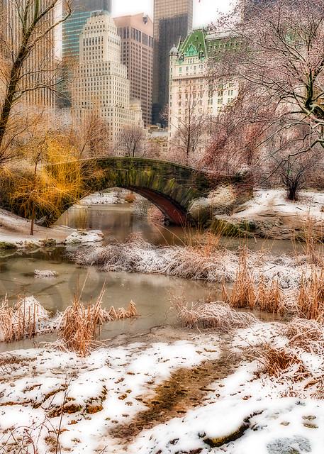 Classic Central Park winter scene
