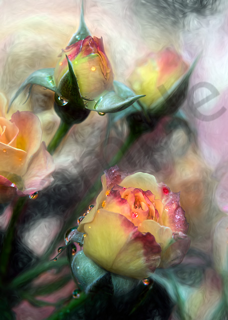 Mixed-media rendition of yellow/red roses