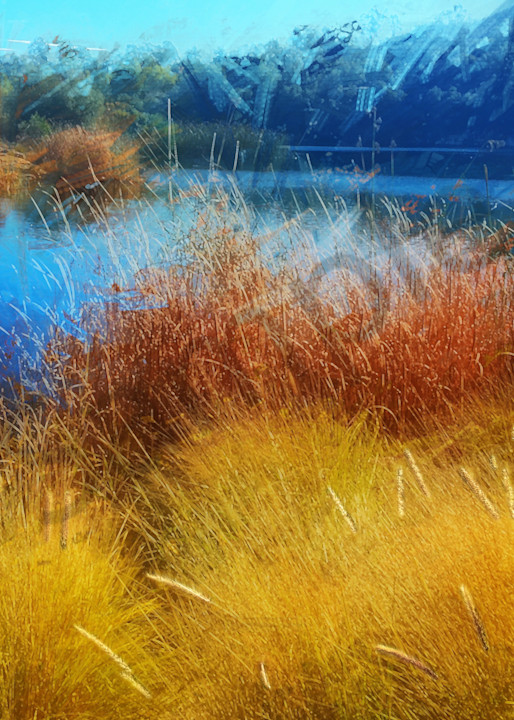 Dixon Lake Winter Reeds - digital painting photograph