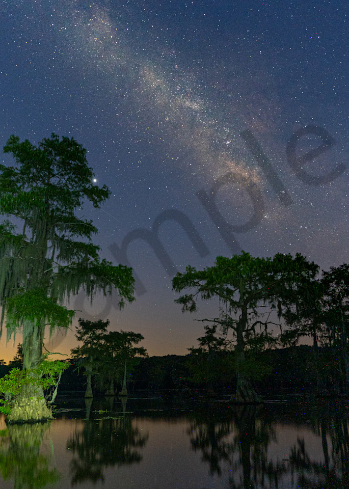 Caddo Lake 2 Photography Art | John Martell Photography