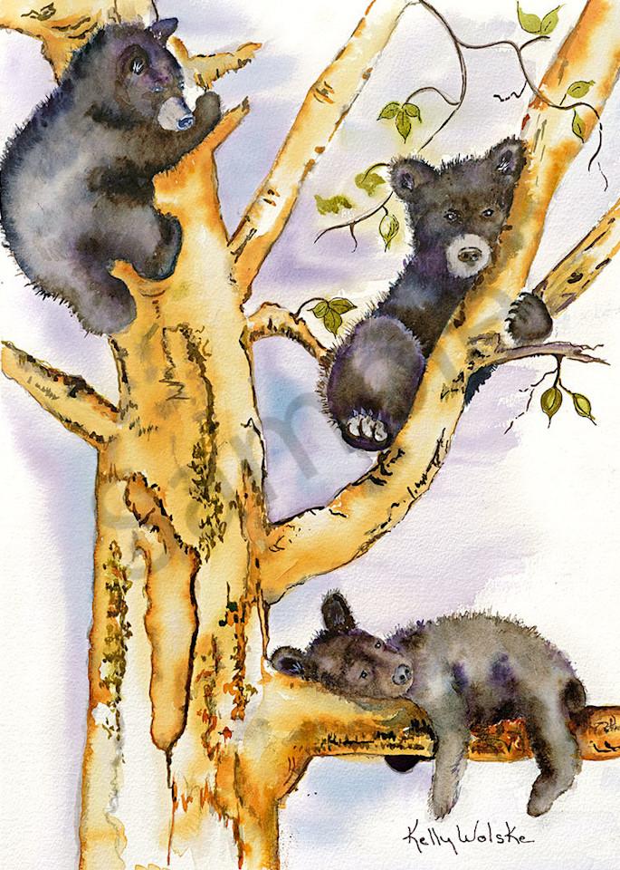 """""""Fuzzy Wuzzy's"""" fine art print by Kelly Wolske."""