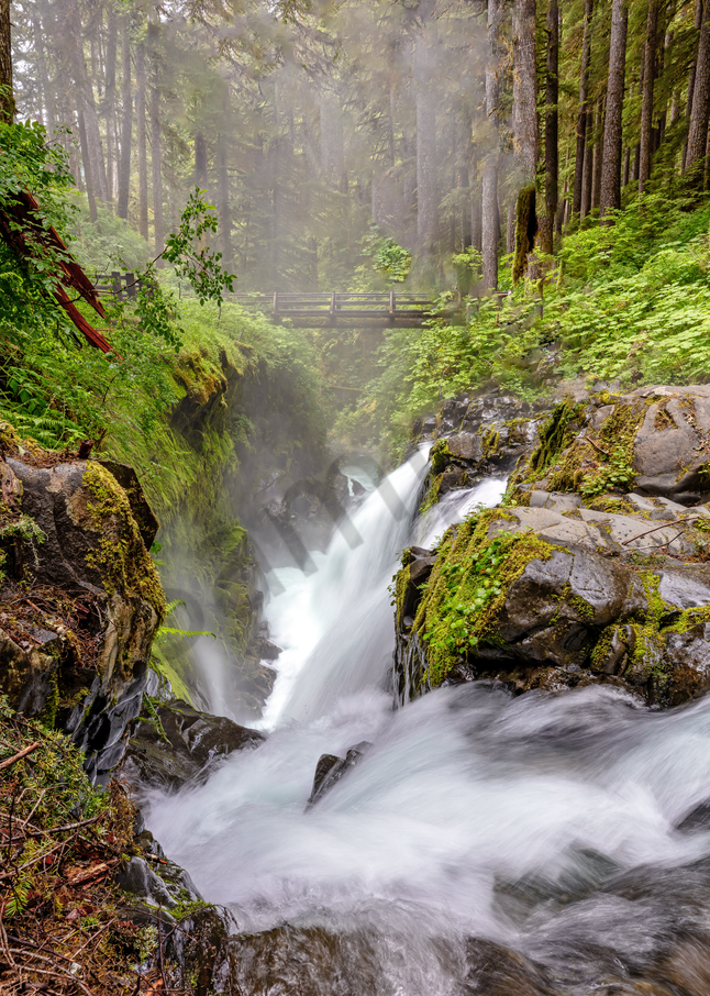 Print Art Olympic National Forest Sol Duc Falls