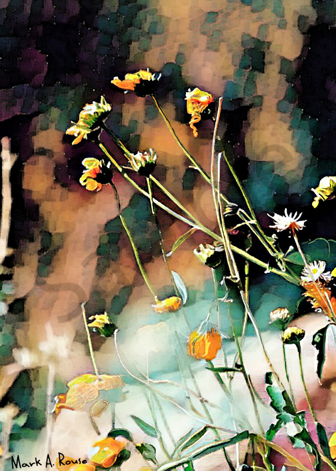 """""""Wildflowers"""" by Indiana Digital Artist Mark Rouse 