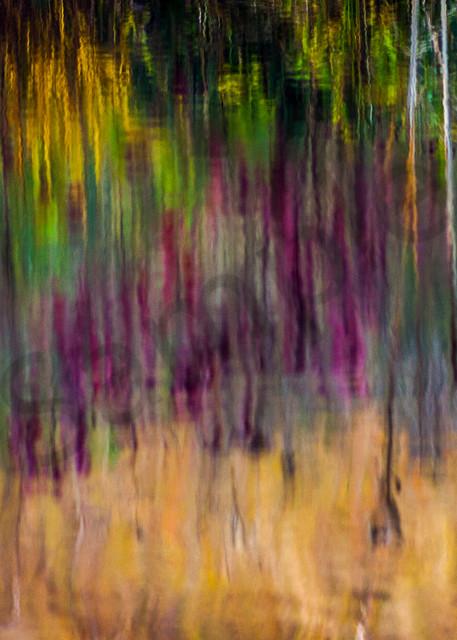 Hallucinations Art | Moshe Volcovich