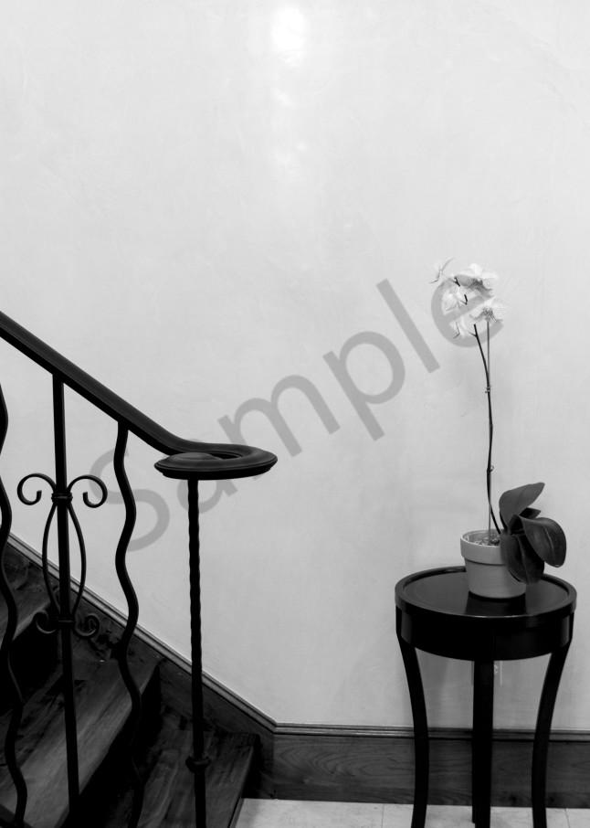 Foyer Photography Art | CLAUDIA LARRAIN