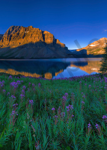 Bow Lake and Crowfoot Mountain in Banff National Park. Canadian Rockies | Rocky Mountains |
