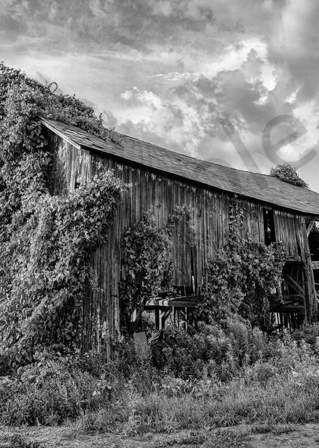 Monochrome rustic barn