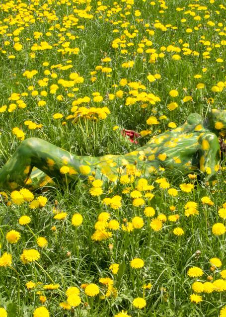 2018  Dandelion Field  Switzerland Art   BODYPAINTOGRAPHY