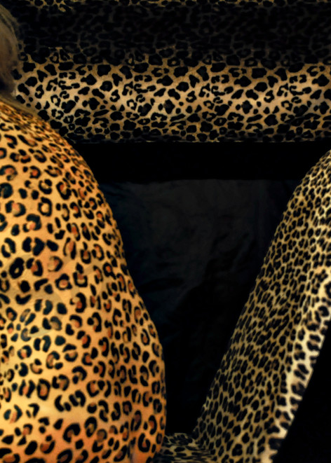 2010   Leopard Chair   Massachusetts Art   BODYPAINTOGRAPHY