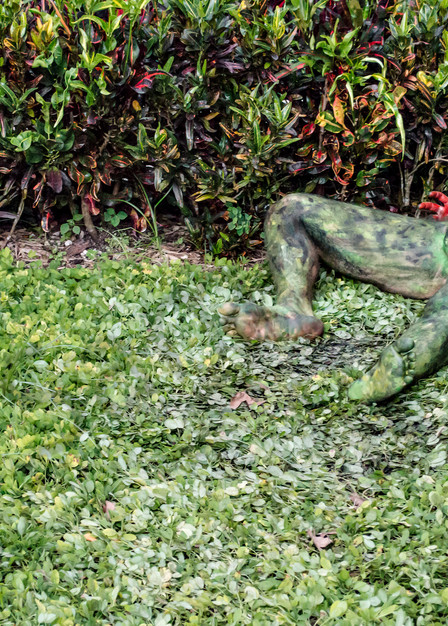 2017 Vizcaya.Garden Florida Art   BODYPAINTOGRAPHY