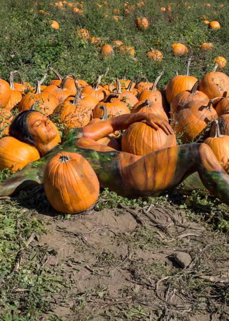 2017  Pumpkin Patch  Massachussetts Art | BODYPAINTOGRAPHY