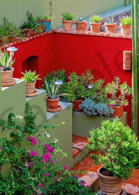 Print Art San Miguel de Allende Mexico Rooftop Garden