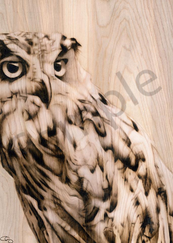 Owl Art | GeorgeCharriezArt