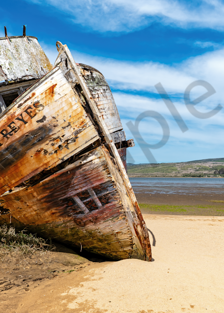 Print Art Inverness California Beached Shipwreck