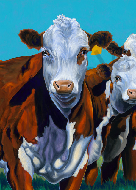 Hereford cow paintings by John R. Lowery, available as art prints.