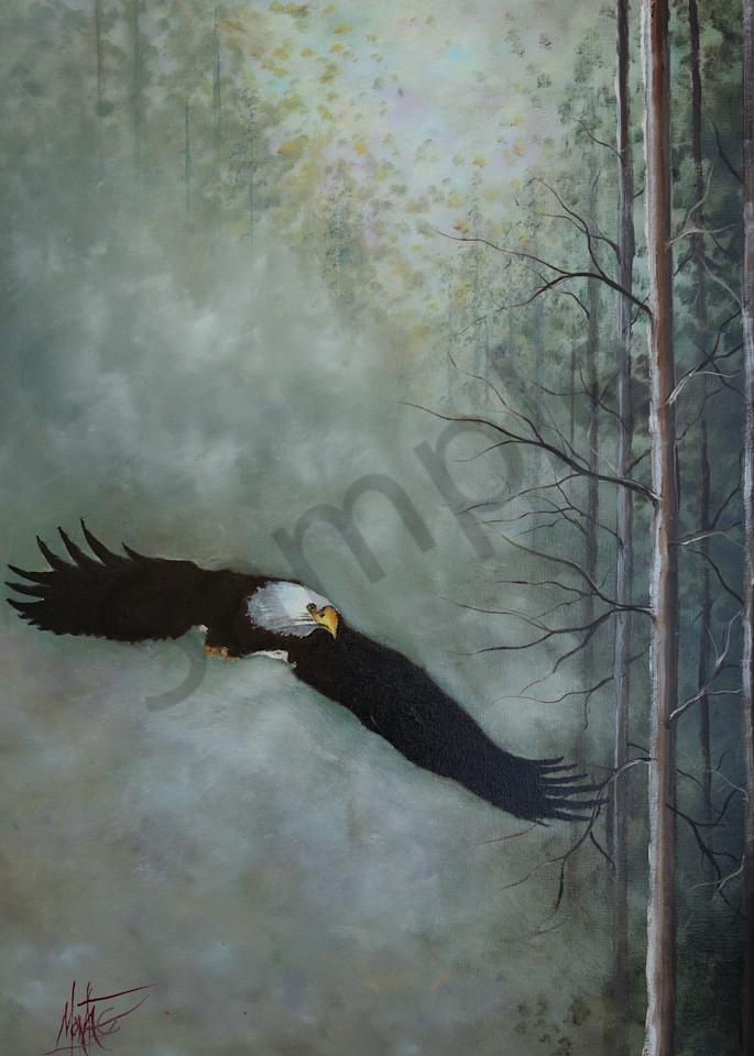 """Out Of The Mist"" by Nebraska Artist Jeff Montag   Prophetics Gallery"