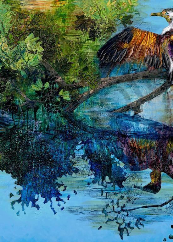 Wynnum creeklife