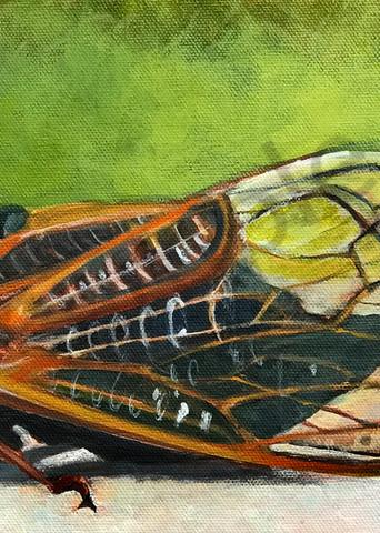 17 Year Cicada 2021 Art   Elizabeth Buttler