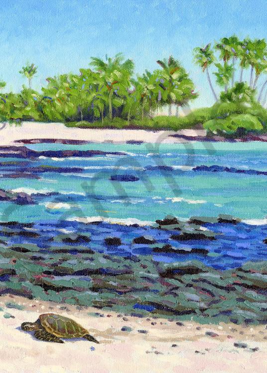 Beach near the Fairmont Orchid