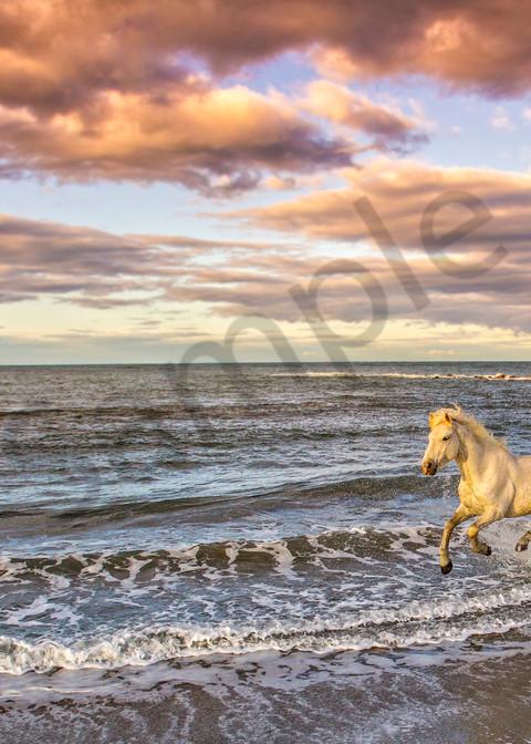 Freedom Photography Art   John Martell Photography