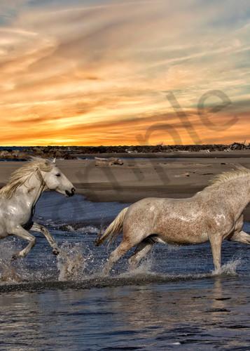 Evening Exercise Photography Art | John Martell Photography