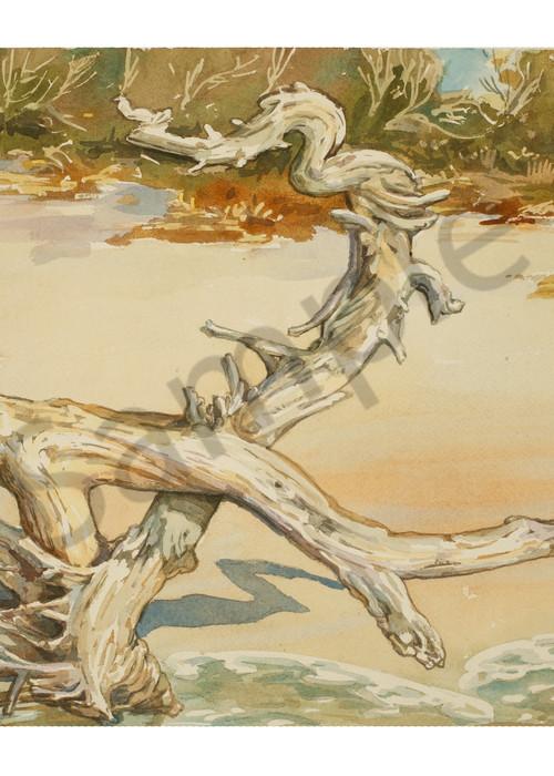 Weathered Sentinel   Watercolor Landscapes   Gordon Meggison IV