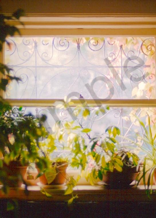 Monet's Window Art | Wild Ponies creations