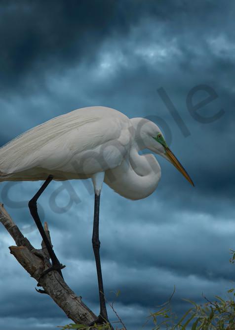 Stormy Skies Photography Art | John Martell Photography