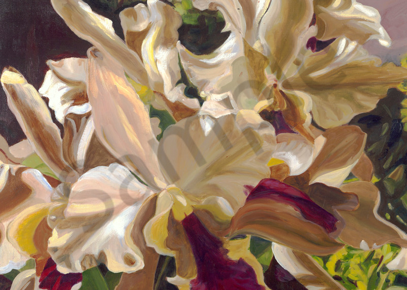 Nature Art   Orchids by Carlisle