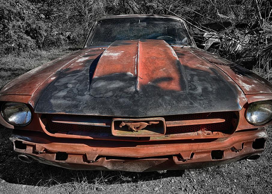 Mustang Photography Art | Robert Jones Photography
