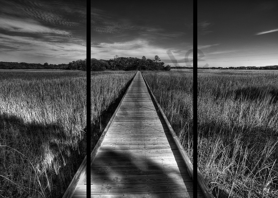 Edisto Boardwalk   Trip Tych Photography Art   Robert Jones Photography