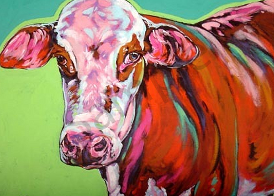 Daisy Art | Sally C. Evans Fine Art