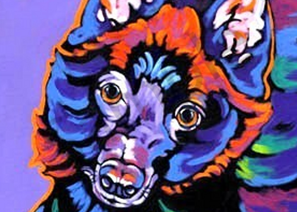 Pepper In Purple Art   Sally C. Evans Fine Art