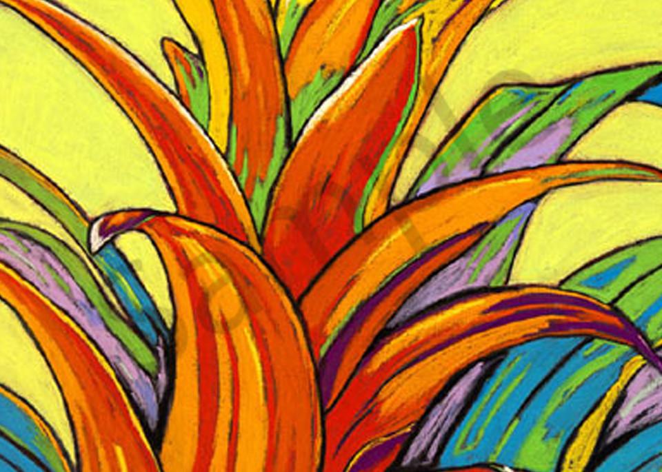 Orange Bromeliad Art   Sally C. Evans Fine Art
