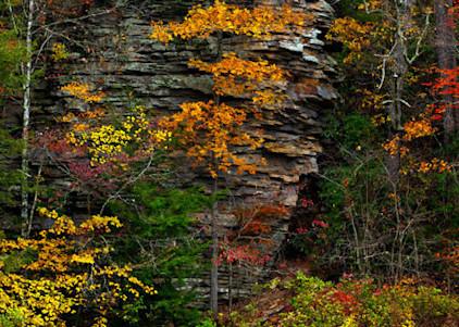 Column Of Color Art | Scott Cordner Photography
