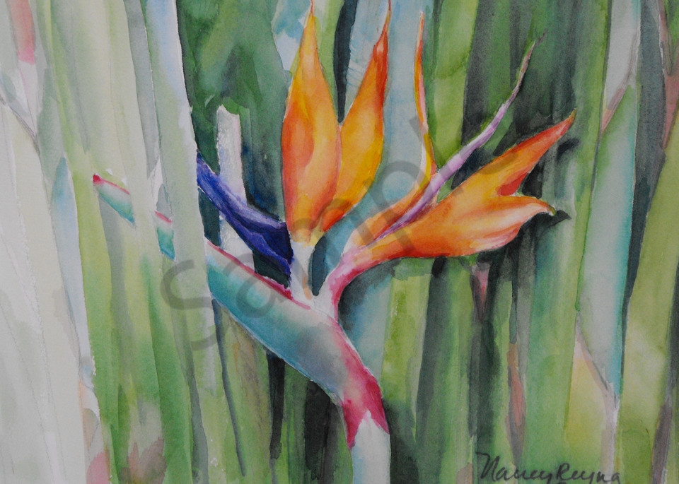 Bird of Paradise Art for Sale