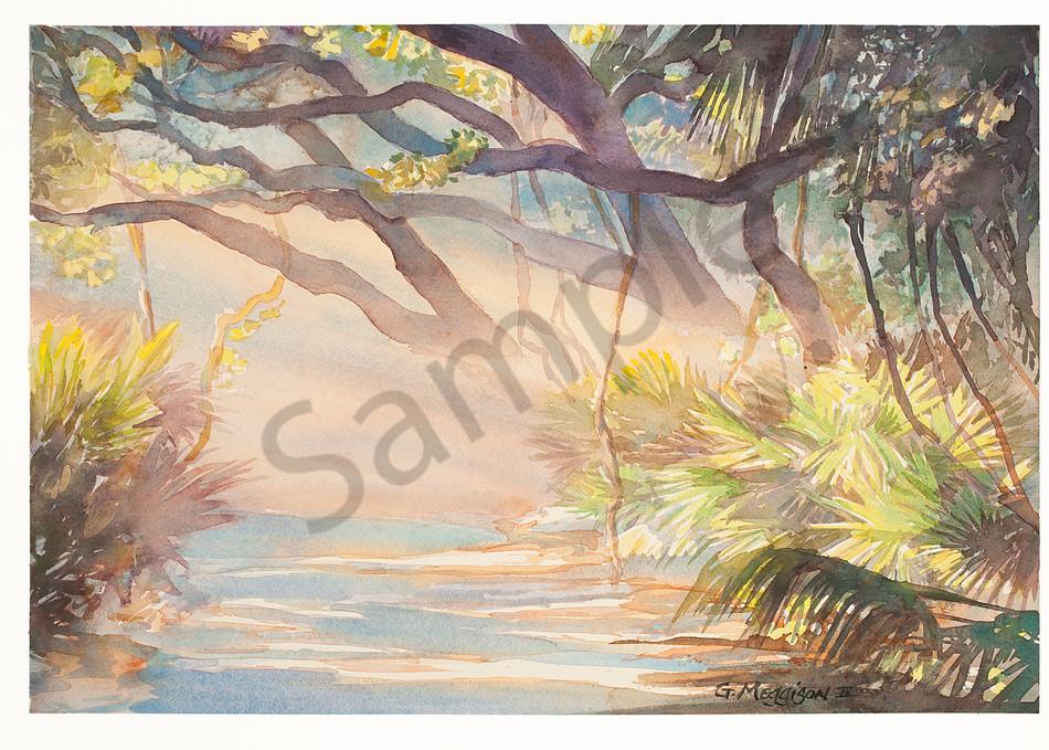 Forest Hymn   Watercolor Landscapes   Gordon Meggison IV