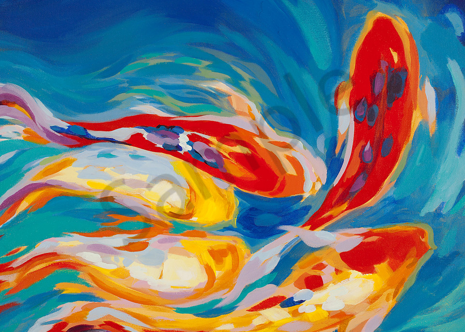 Colorful Koi | Zen Landscapes | Gordon Meggison IV