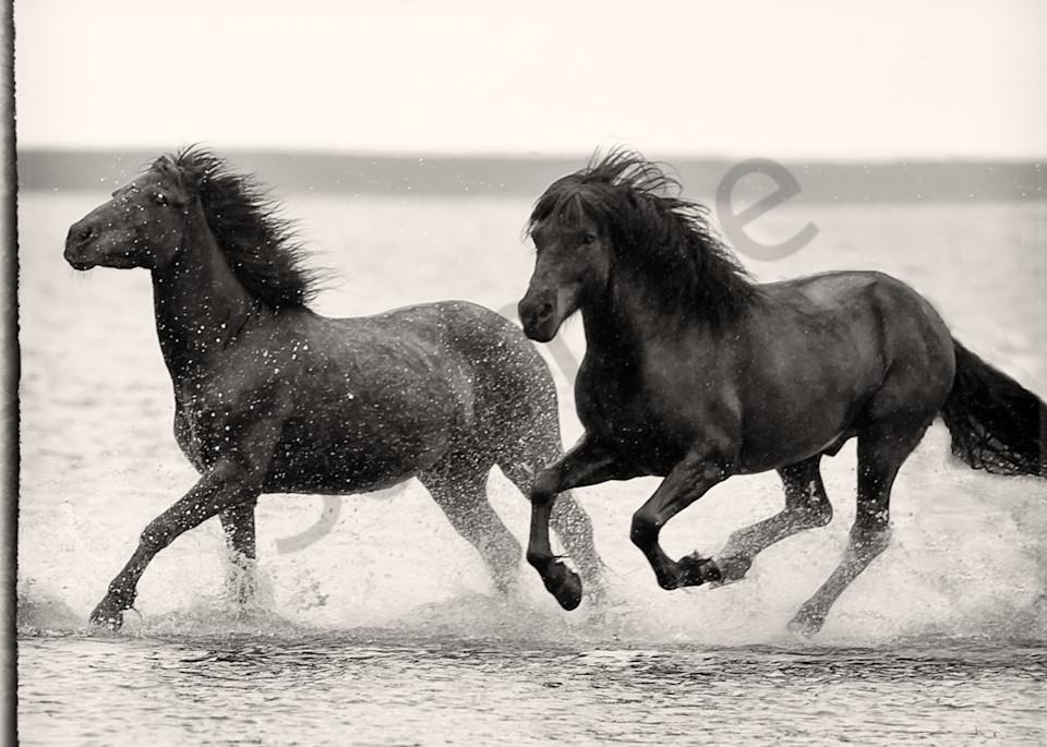 Beach Race Photography Art | HoofPrintsFineArt
