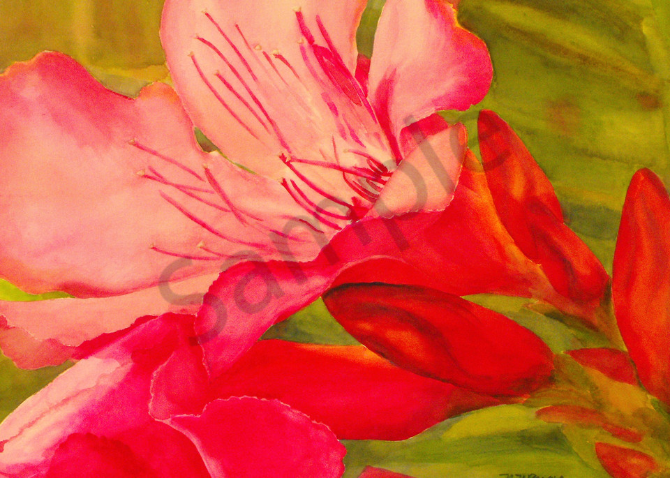 Pink Art for Sale