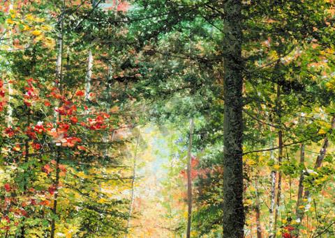 Fall's Whisper Art   Art by Ashley Dull