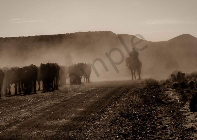 Dusty Drive Photography Art   Mason & Mason Images
