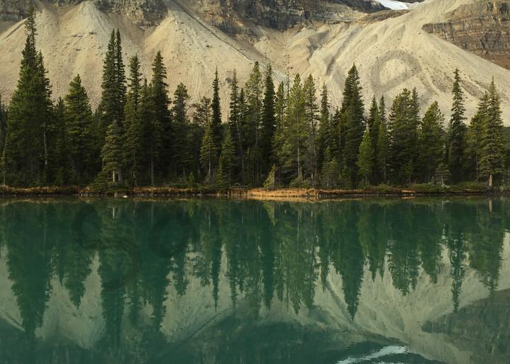 Bow Lake Photography Art   Swan Valley Photo